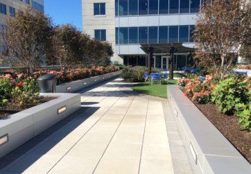office rooftop design