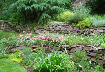 A terraced stone wall is seasonally transformed with color and bloom