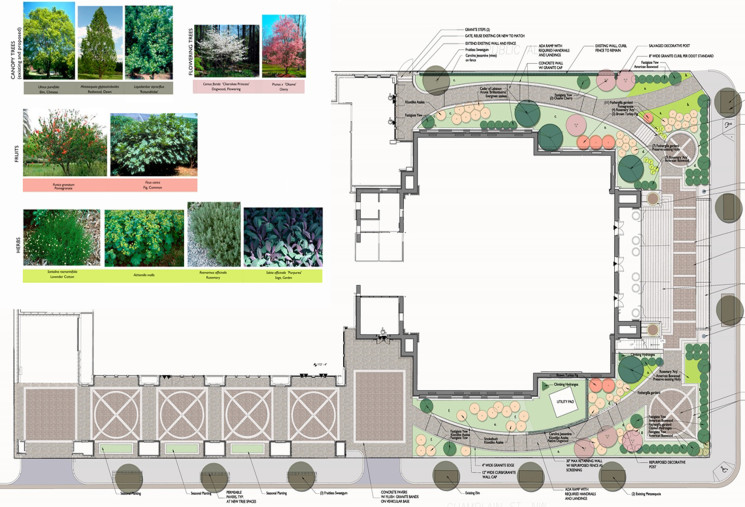 Plan view of planting scheme