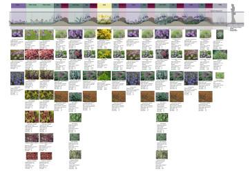 Planting palette