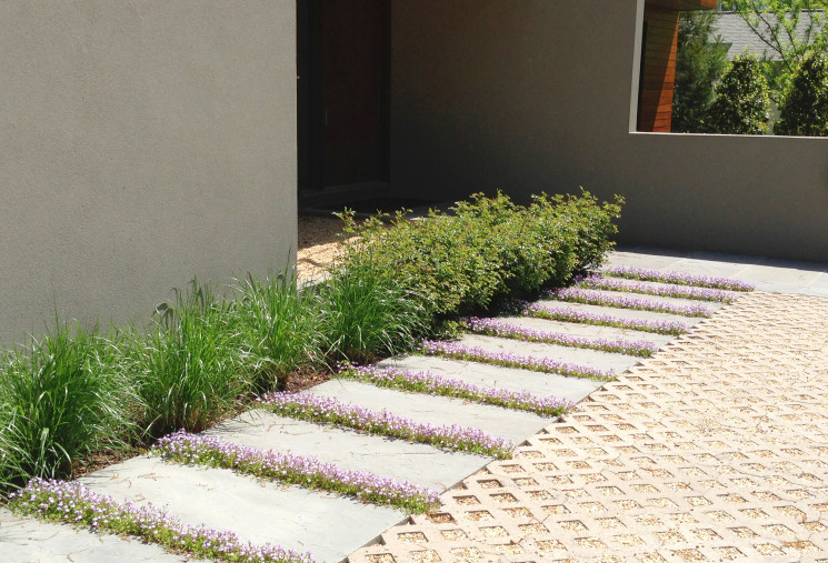 A sustainable porous drive is lined with a stone path planted with Mazus
