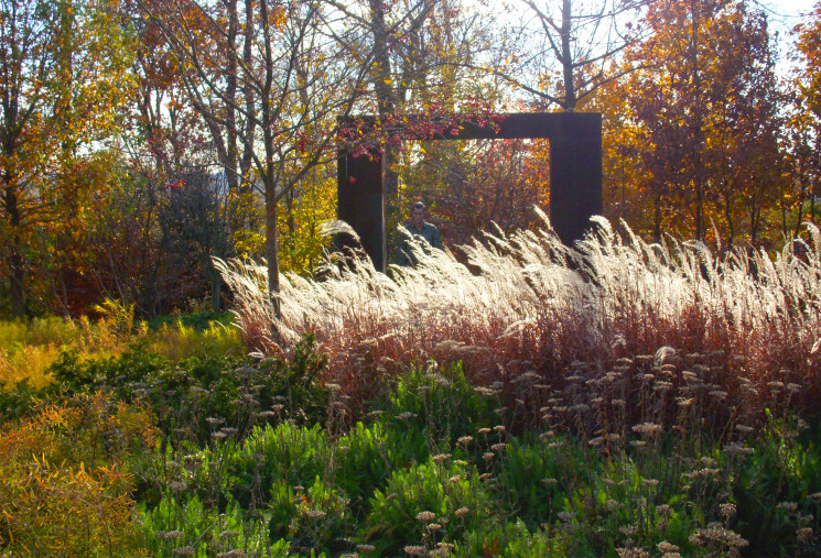 A modern meadow surrounds sculpture collection providing a dynamic setting that changes with the seasons
