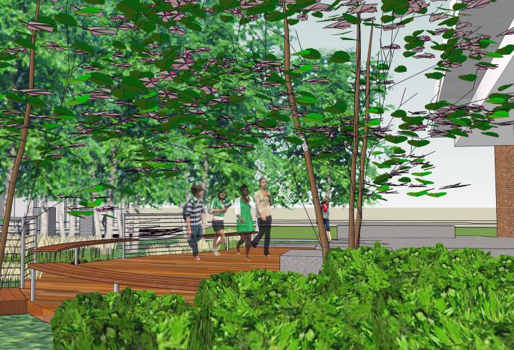 View of deck overlooking wildlife rain garden
